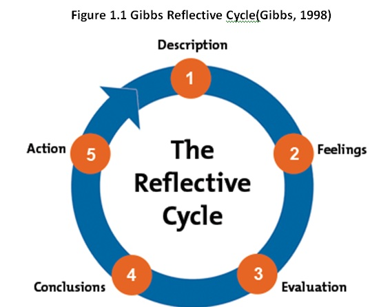 2429_gibbs_reflective_Cycle.jpg