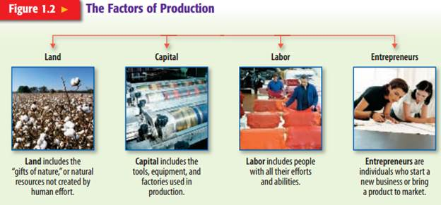 mobility of factors of production land Why are the factors of production important to economic growth land and labor are the earliest factors of production.
